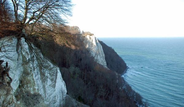 Ausblick auf den Königsstuhl und Kreidefelsen im Nationalpark Jasmund auf der Insel Rügen und dem Buchenwald