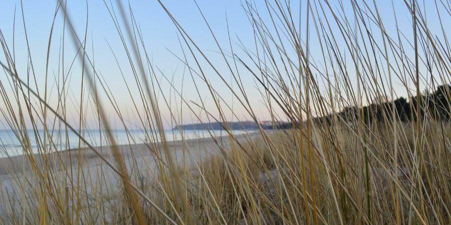 Traumhafter Strandurlaub auf Rügen in den Dünen von Baabe mit Blick zum Ostseebad Göhren auf Rügen