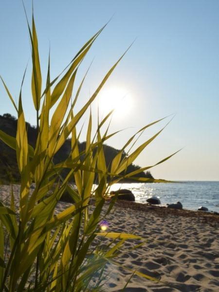 Sommerurlaub am Ostseestrand in Göhren auf der Insel Rügen