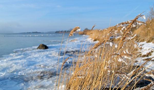 Eis auf dem Strelasund bei der Glewitzer Fähre – Winterurlaub auf der Insel Rügen